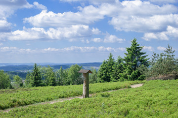 View from Kahler Asten Mountain in Winterberg,Sauerland,Germany